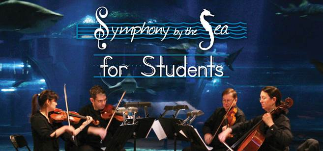 symphony-by-the-sea